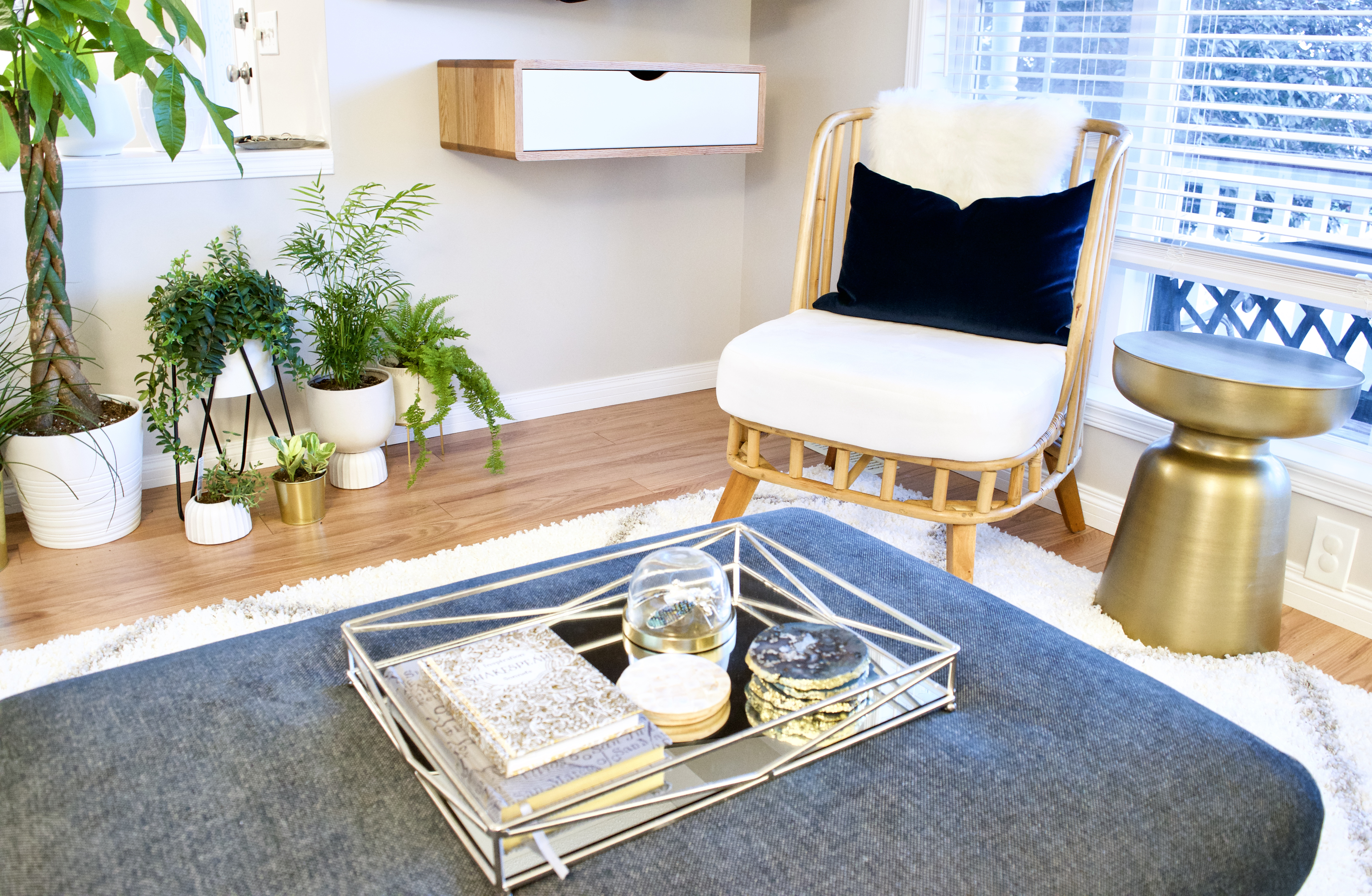 wicker chair wicker dry climate care gold side table tray ottoman plants plant stands blue velvet white rug living room cat safe plants modern 2019 2020 interior design small space silver gold grey grey Calgary cat pet dog safe plants toxic non-toxic